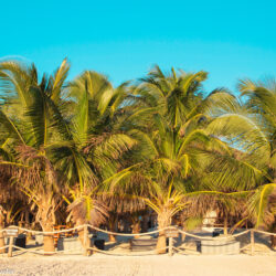 Affordable Tulum: Beach Bliss on a Budget